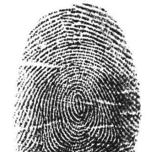 Apple's fingerprint scanner may be hidden in iPhone